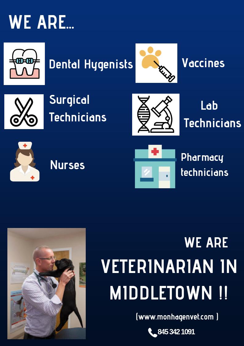 Veterinarian In Middletown Veterinary Services Pet Health Pet Vet