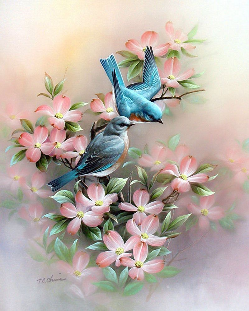 Художник Tan Chun Chiu   Нарисовать птицу, Краска и Картины
