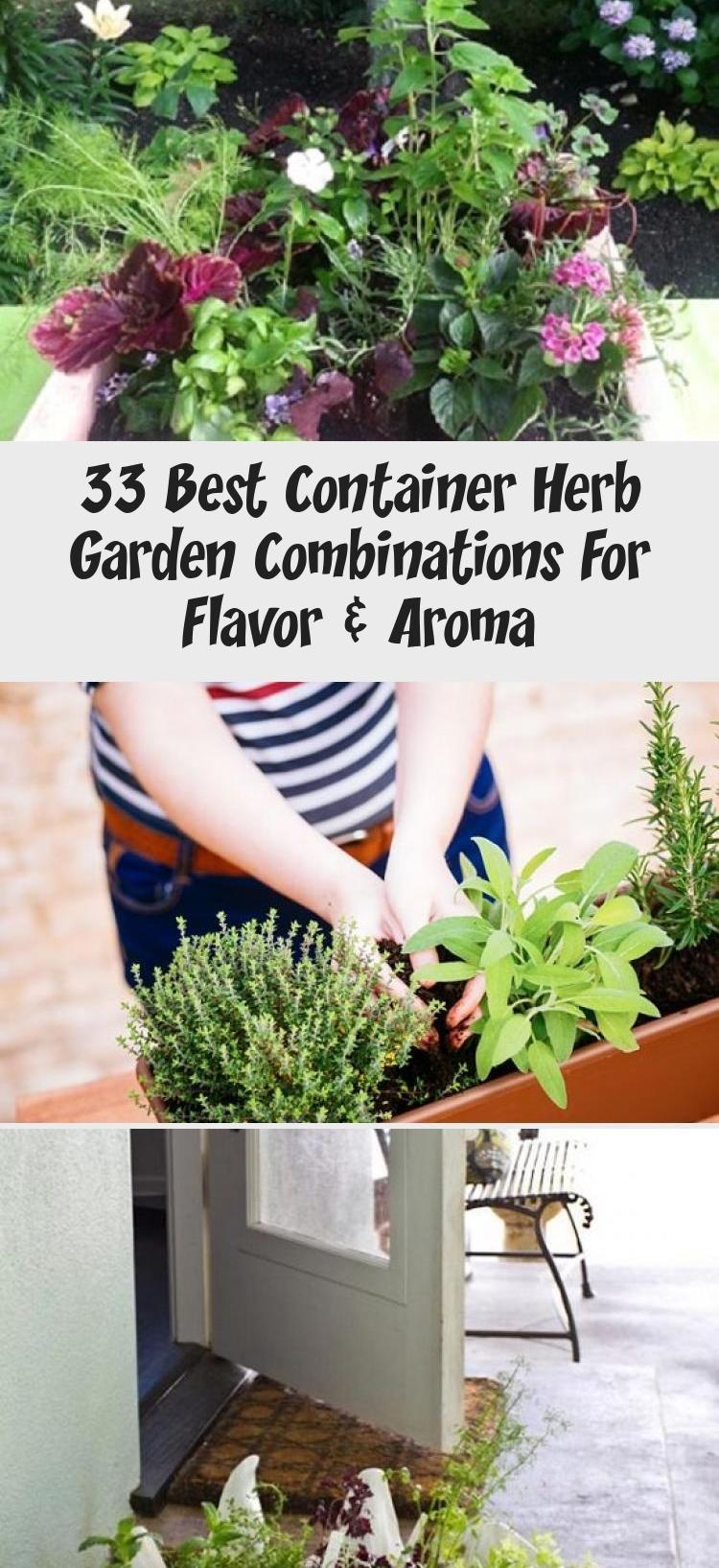 33 Best Container Herb Garden Combinations For Flavor Aroma Container Herb Garden Outdoor Herb Garden Herbal Tea Garden