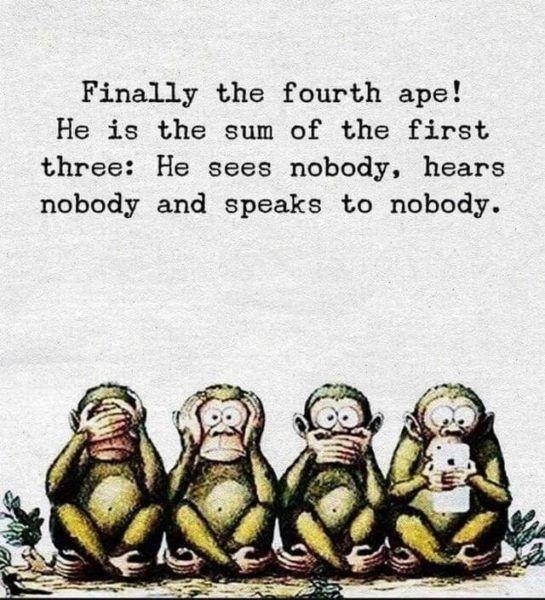 See nobody, hear nobody, speak to nobody – The Fourth Ape…