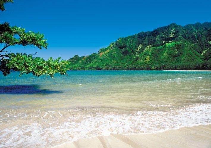 Des pâtisseries de Wailuku à la cuisine biologique de Lahaina, Maui est la destination préférée des amateurs de cuisine. Seconde île en importante à Hawaï, elle est reconnue pour le surf, la plongée, l'observation de baleines et le parc national de la vallée de lao, où l'on retrouve une roche volcanique appelée l'aiguille du lao.