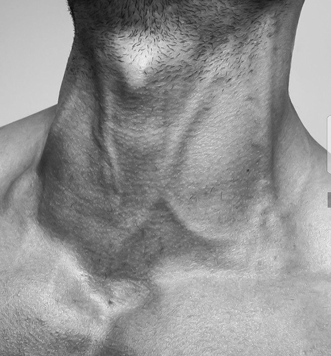 работаем красивые картинки мужской ключицы монтекатини терме масса