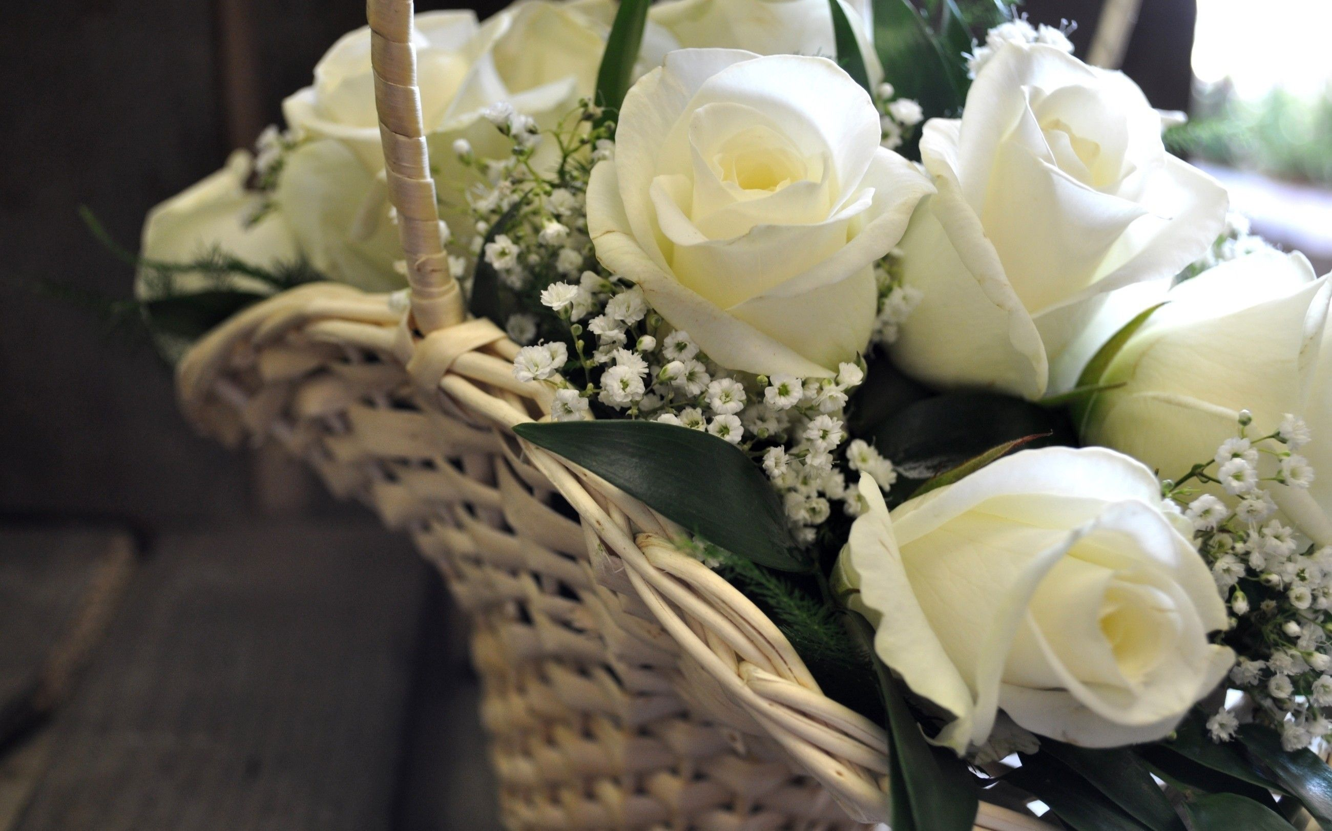 Beautiful Basket Of White Roses Desktop Background Wallpapers Hd