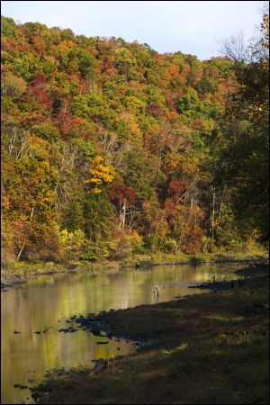 Little Red River At Jfk Campground Heber Springs Arkansas