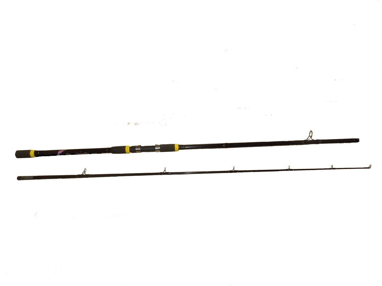 Saltwater 20 40lb Surf Fishing Rod Black Magic 10 Ft Surf Fishing Rods Saltwater Lures Saltwater Fishing