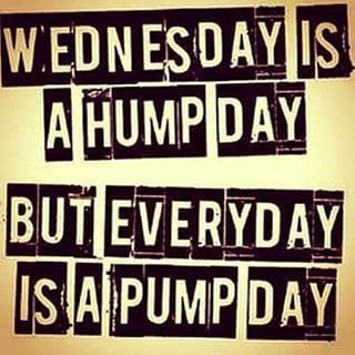 Workout Wednesday Wednesday Workout Gym Humor