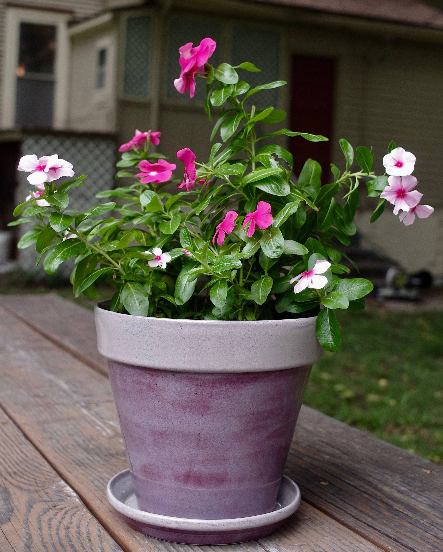 Large ceramic planter with drainage handmade indoor