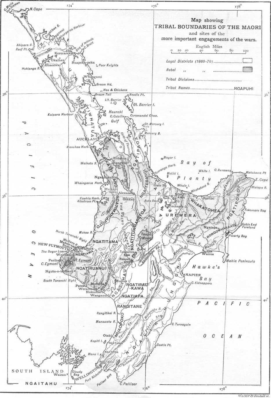 Map showing Maori tribal boundaries in the North Island of New