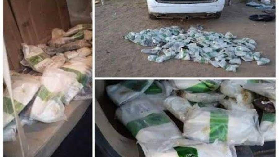 مقاومة البيضاء تضبط كميات من الحشيش كانت في طريقها إلى الحوثيين بصنعاء Brussel Sprout Sprouts Brussel