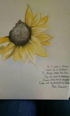 Sunflower sketch & Pam Stewarts Sunflower poem!