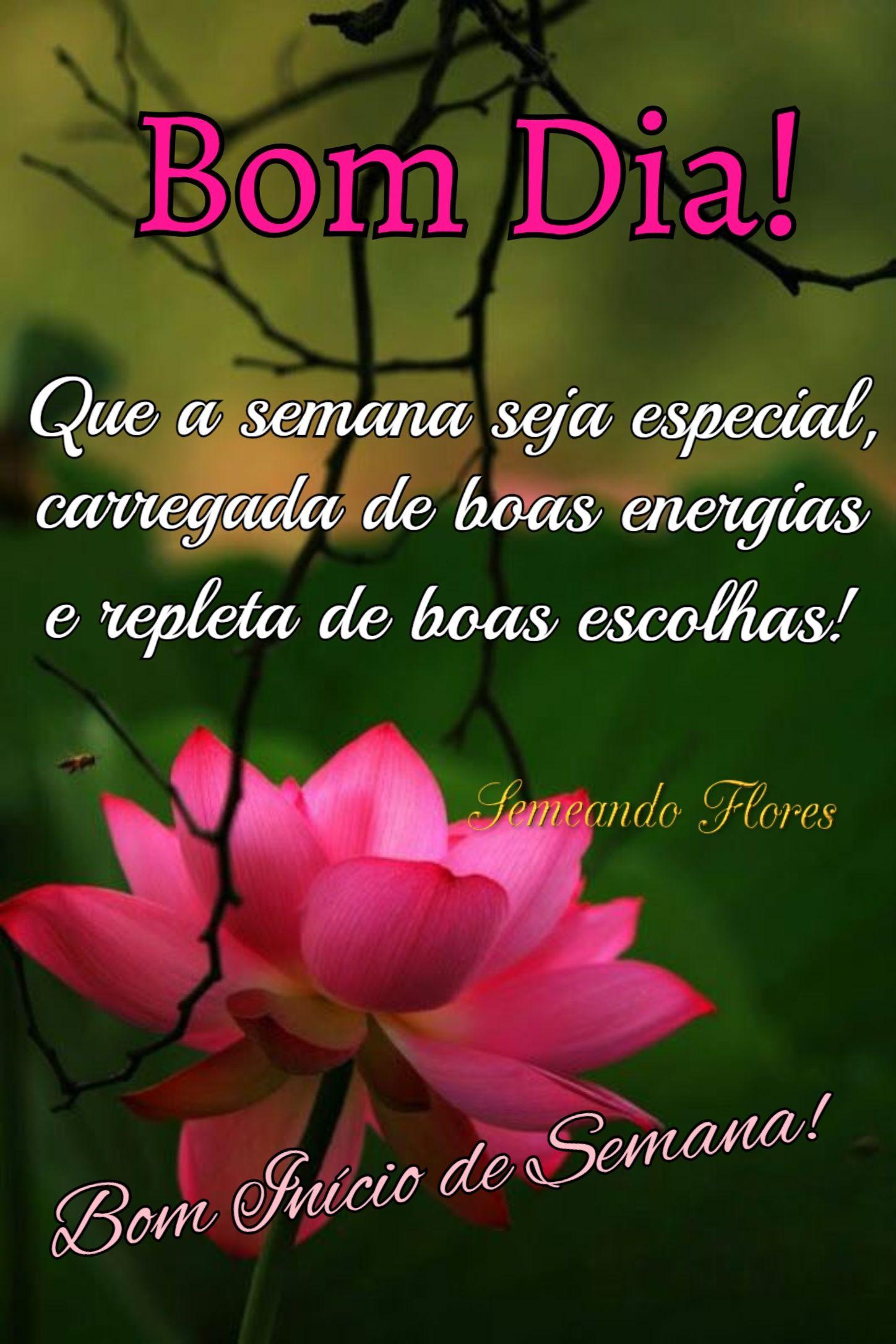 Pin De Maria M S Rosa Em Semana Com Imagens Mensagem De Bom