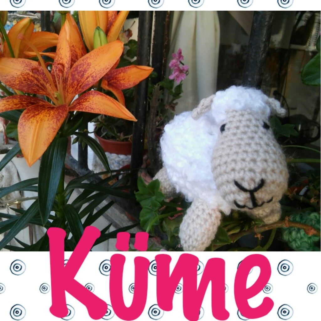 Ovejita by Küme