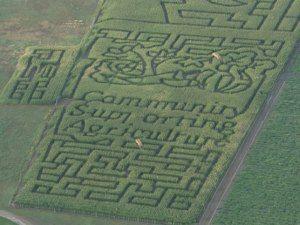 fc310fa54f4c0b70b89c19e8b029ac24 - Denver Botanic Gardens Corn Maze Hours