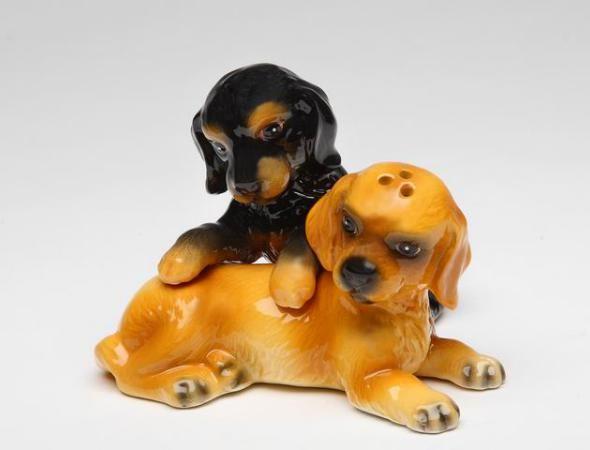 Cocker Spaniel Puppy S&P