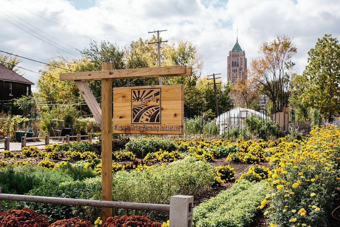 strong>Michigan Urban Farming Initiative</strong> 7432 Brush St ...