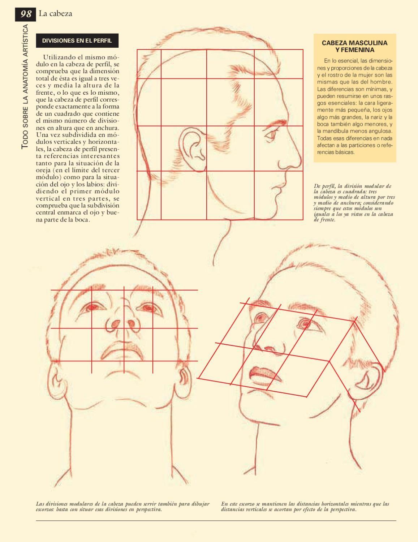 Todo sobre la técnica - Anatomía artística   Dibujo anatomico ...