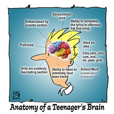 For Teenage Brains Importance Of >> Buzzcanada 10 Most Important Things In The Mind Of An