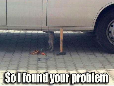 fc32bf9f1a726ec215bc82ebae300caf car mechanic kitty ceiling cat buybull pinterest,Funny Aircraft Mechanic Memes