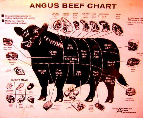 Pin by Jeff Gordon on Grilling and smokers Beef cuts chart, Beef