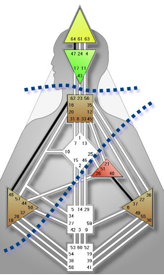 Triple Split Definition Humandesign Com Human Design System Desenho Humano Design Humano