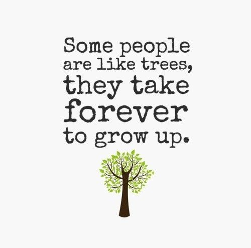 Some People Never Grow Up Quotes Some People Are Like Trees They Take Forever To Grow Up Quote Immaturity Quotes Growing Up Quotes Up Quotes