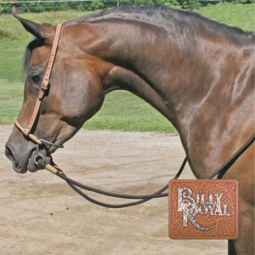 Bitless-Bridle-Controller-Headstall-Bosal-Hackamore-By-Billy