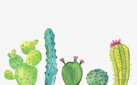 Cactus, Cactus Clipart, Watercolor PNG Transparent Clipart Image and PSD File for Free Download