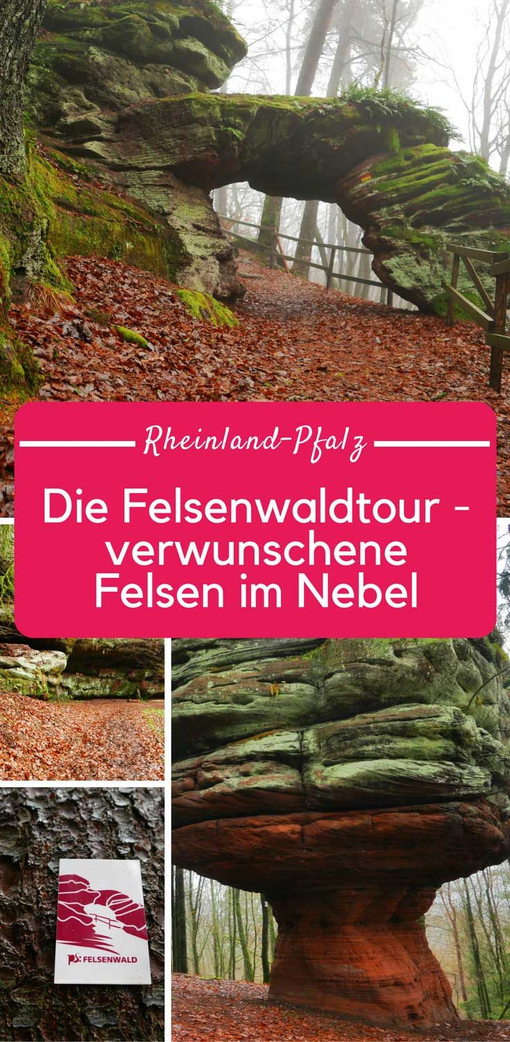 Photo of Rock forest tour in the Palatinate: rocks in the fog near Pirmasens