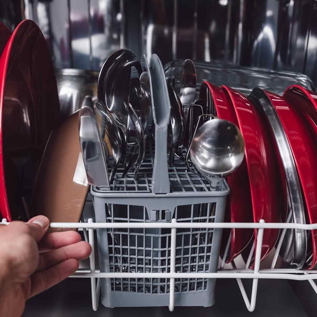 New Today Do You Have A Moldy Dishwasher Here S How To Tell And How To Fix It Metrogaragedoor Com Dishwasher Repair Cleaning Dishes Clean Dishwasher