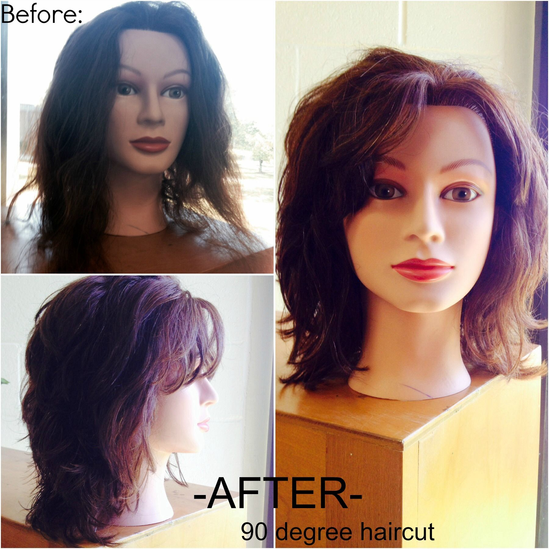 Before And After 90 Degree Haircut   After Sectioning The Hair For The 90  Degree