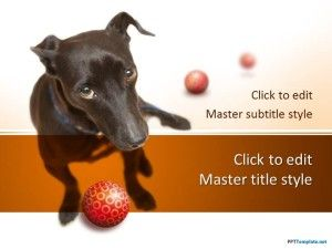 dog powerpoint template