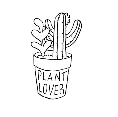 Cute starbucks drawings tumblr
