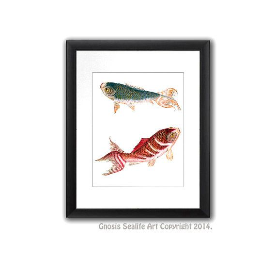 Asian Home Decor Koi Fish Wall Art Print #2. Koi Is Symbol For LOVE And  Friendship. Asian Art, Chinese Art Decor, Japanese Art Decor