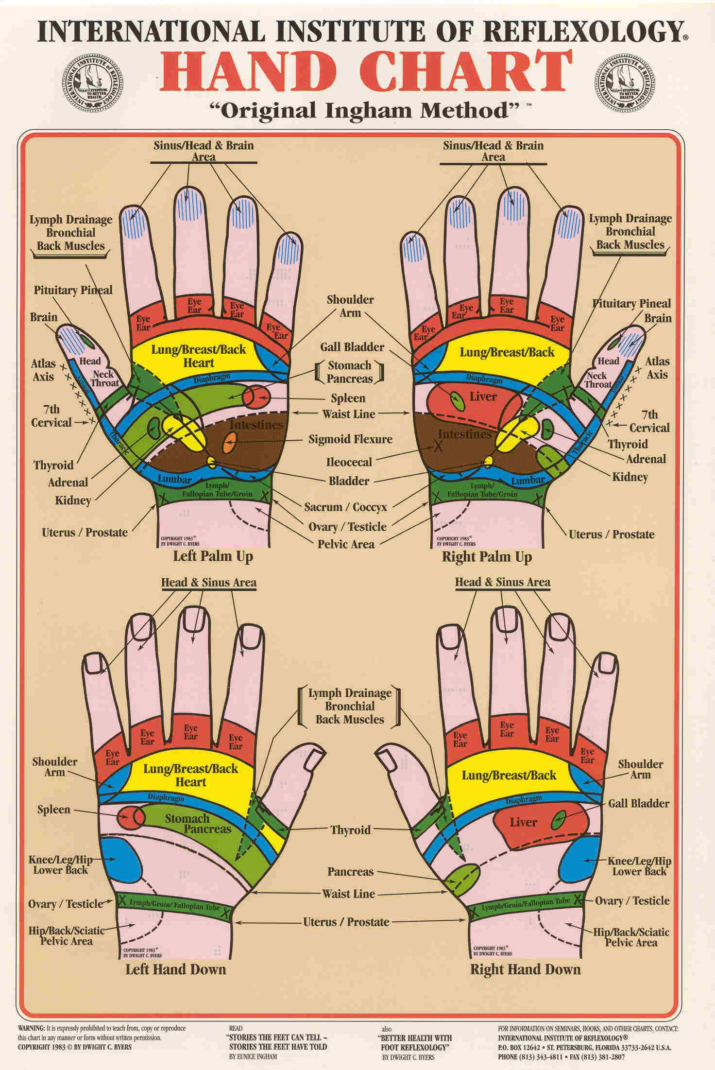 Reflexology www.acupunctureconnections.com | Reflexology, Hand ...