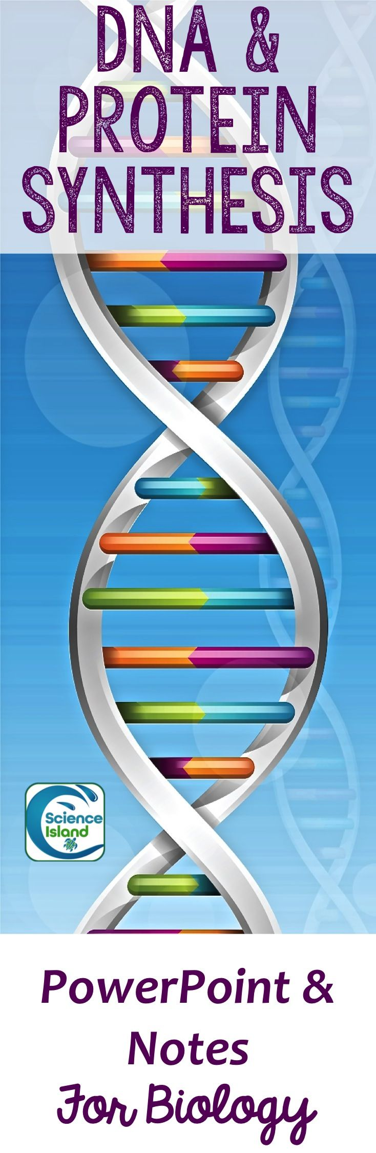 DNA and Protein Synthesis PowerPoint Lesson and Notes