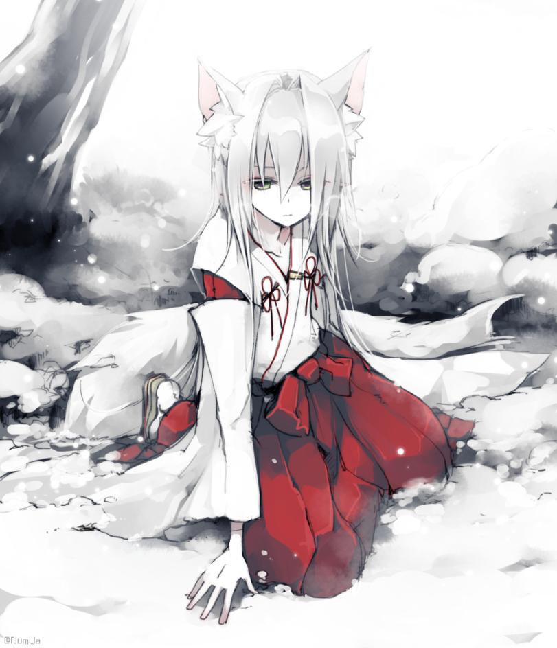 Anime,Аниме,phantasy star online 2,Animal Ears