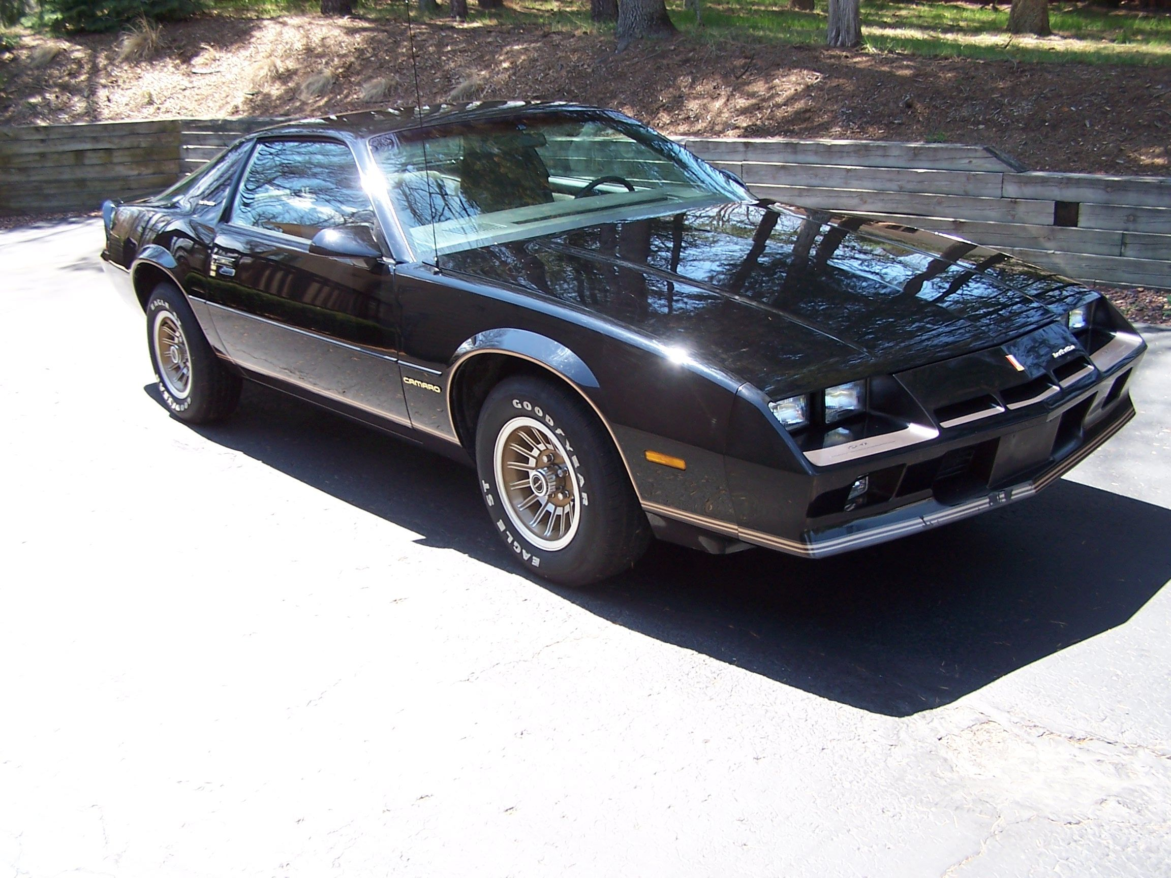 1983 chevrolet camaro berlinetta so much like my 39 84. Black Bedroom Furniture Sets. Home Design Ideas