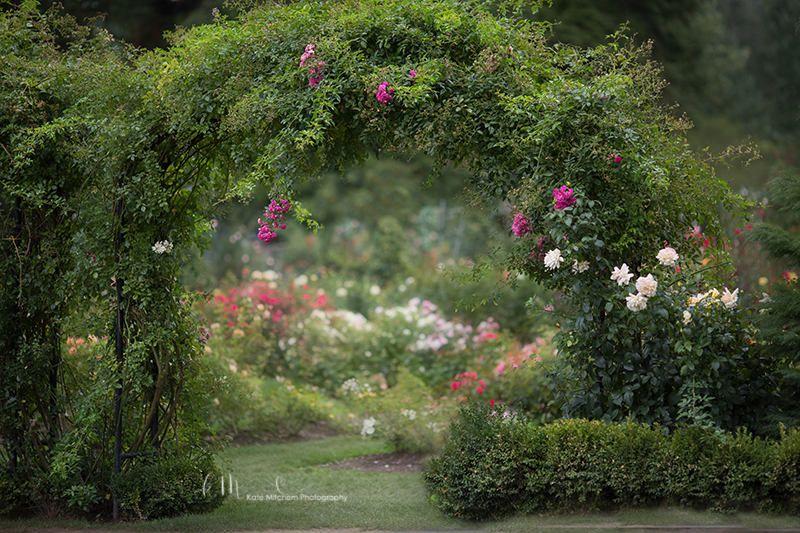 Digital Background Of Botanical Flower Garden Arbor By Froznintime On Etsy Flower Garden Design Botanical Flowers Garden Arbor