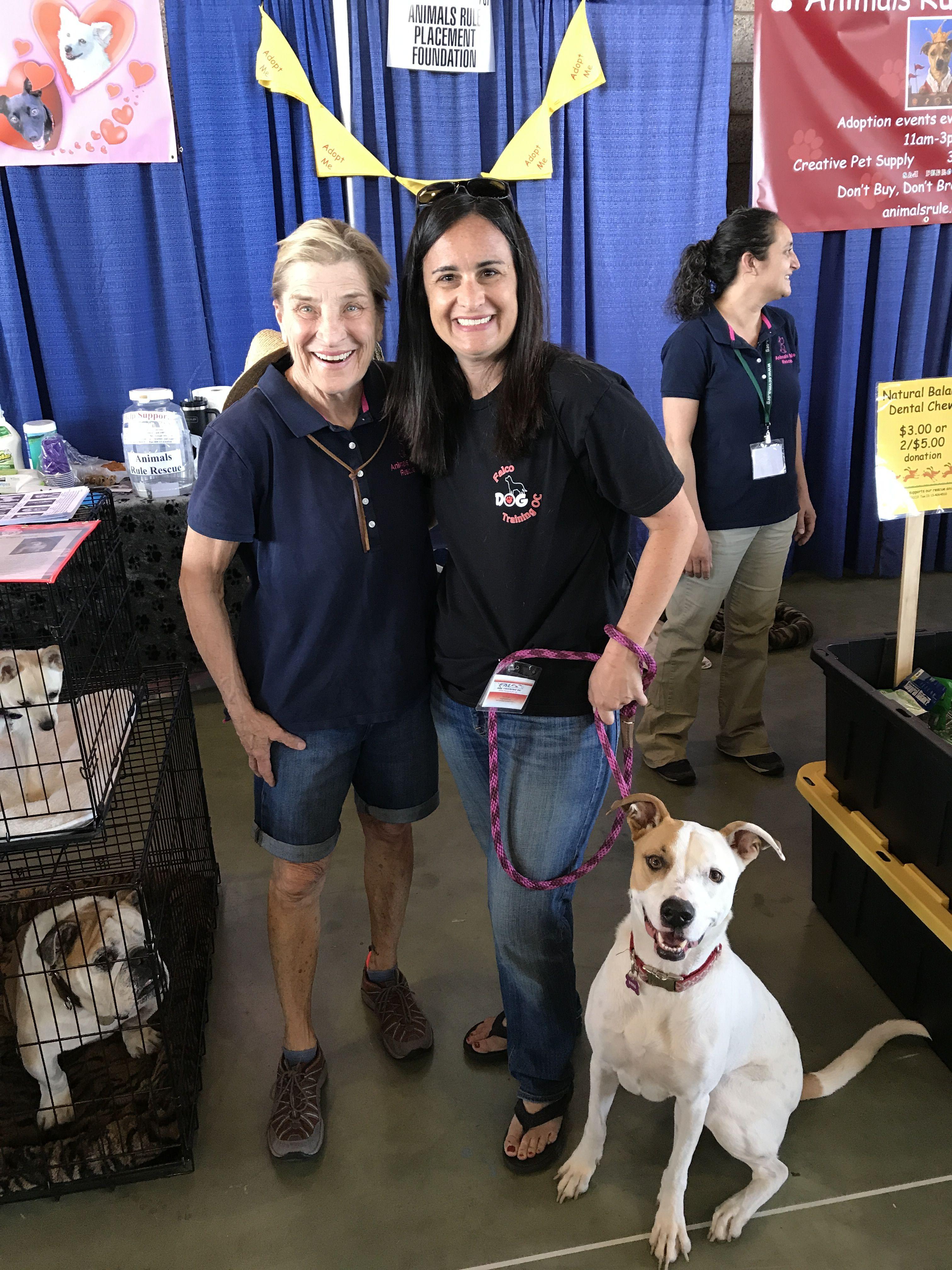 Pin by Falco Dog Training OC on Oc pet expo Pets, Pet