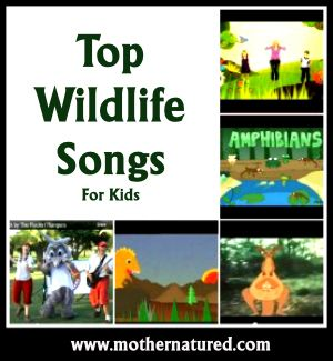 Wildlife Songs to go with the Animal dice. {Animal Week}