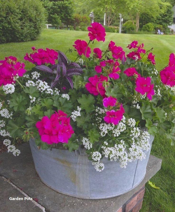 30 Amazing Ideas For Growing A Vegetable Garden In Your: 15 DIY Broken Pot Fairy Garden Ideas-DIY Broken Pot Fairy