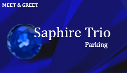 London City Airport Parking Sapphire Trio Meet And Greet Parking Holidayparkings London City Airport Airport Parking Airport City