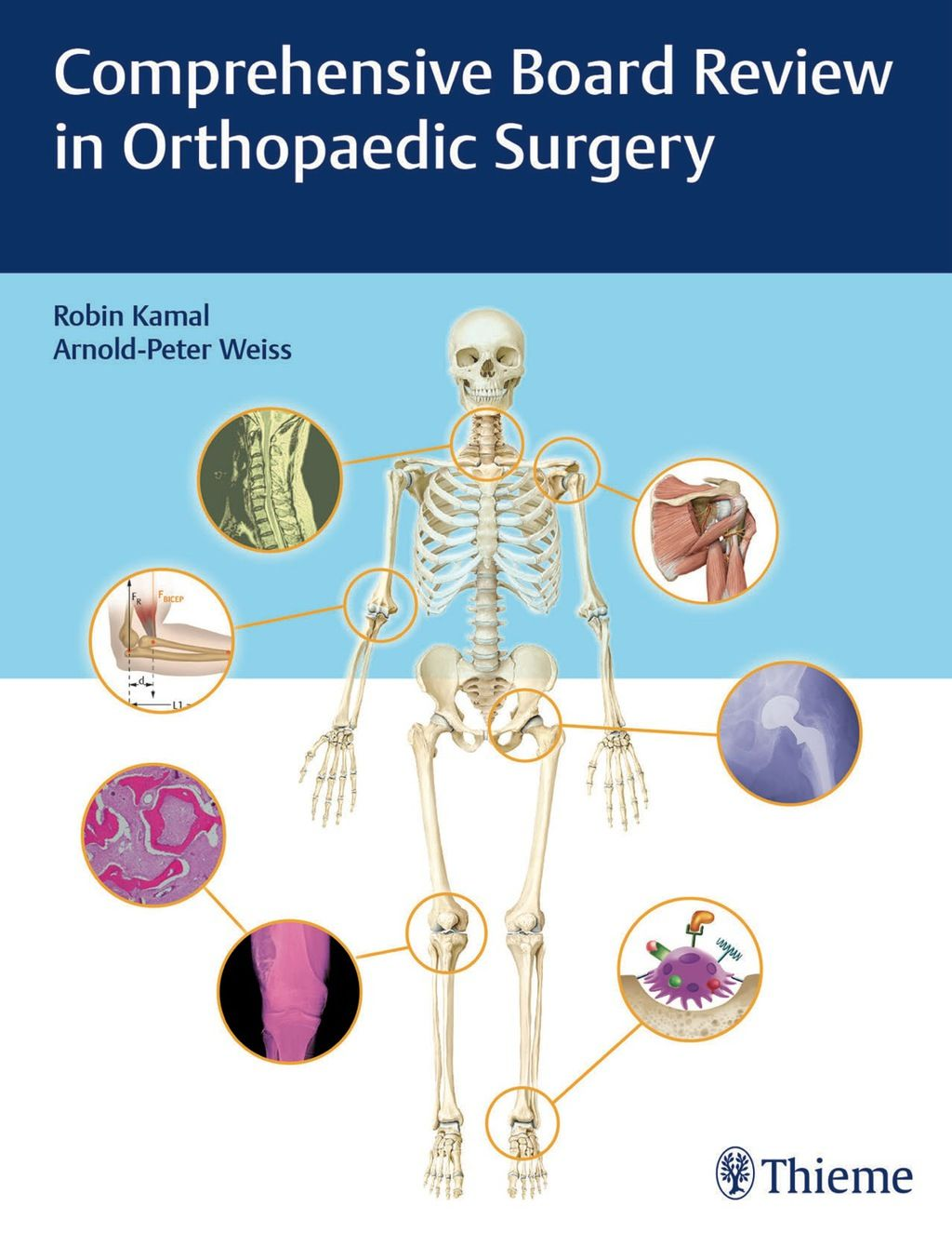 Polsdorfer Coccydynia And The Orthopaedic Rectal Examination Manual Guide