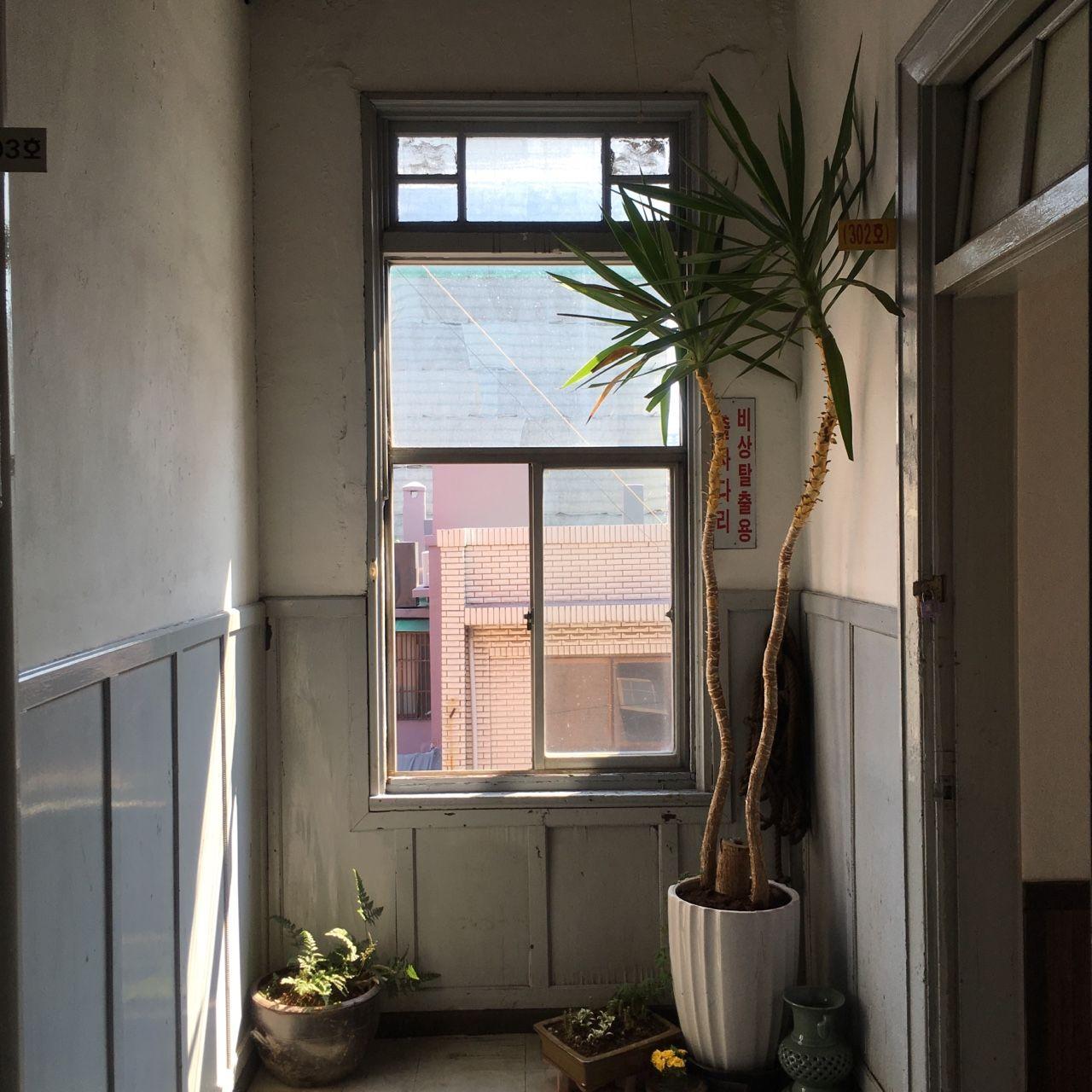 첫 술에 배부를 수는 없으니  만약 2층에 개원한다면 복도에 채광이 좋은 창이 하나 있었으면