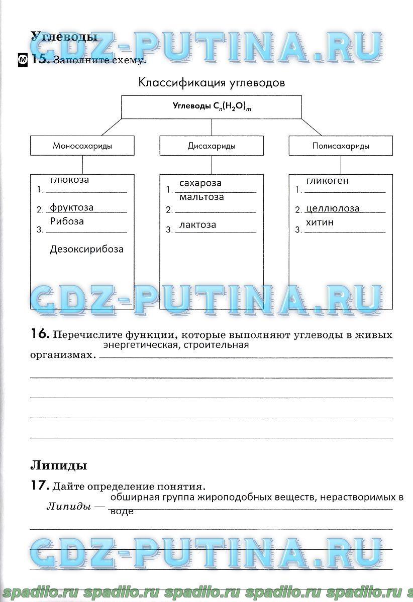 Полугодовой тест по обществу 6 класс а.и.кравченко е.а.певцова ответы