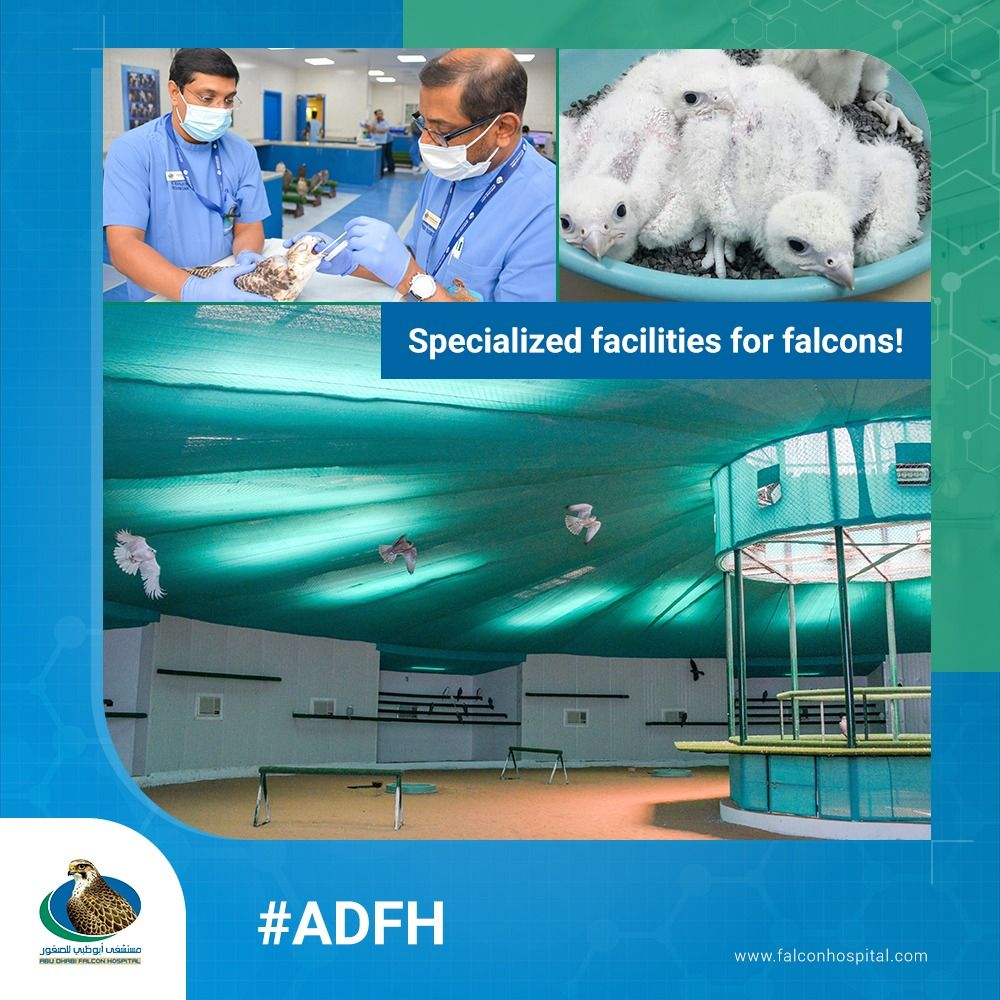 Adfh prides on comprehensive healthcare and veterinary