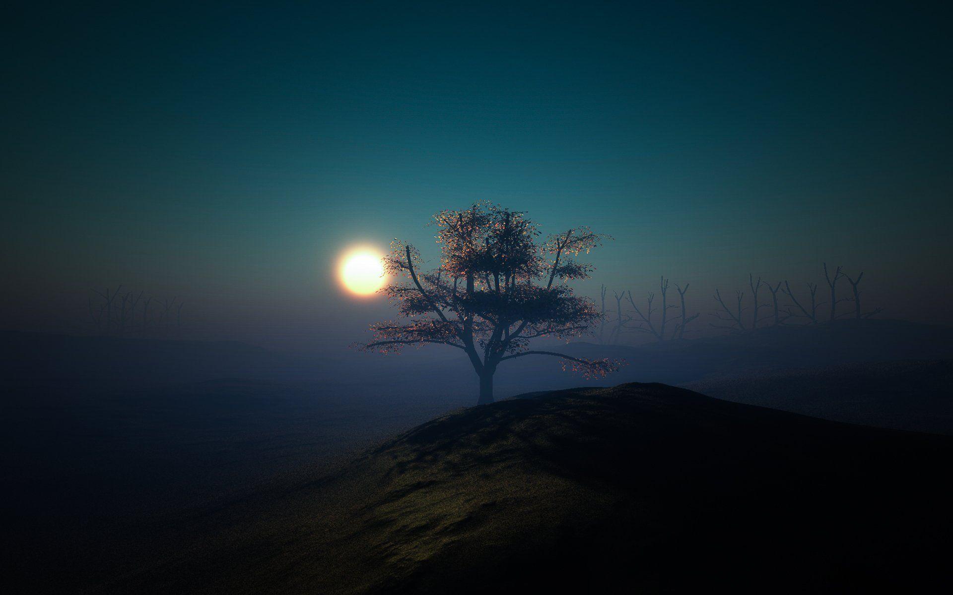 дерево холм луна свет ночь минимализм HD обои для ноутбука ...