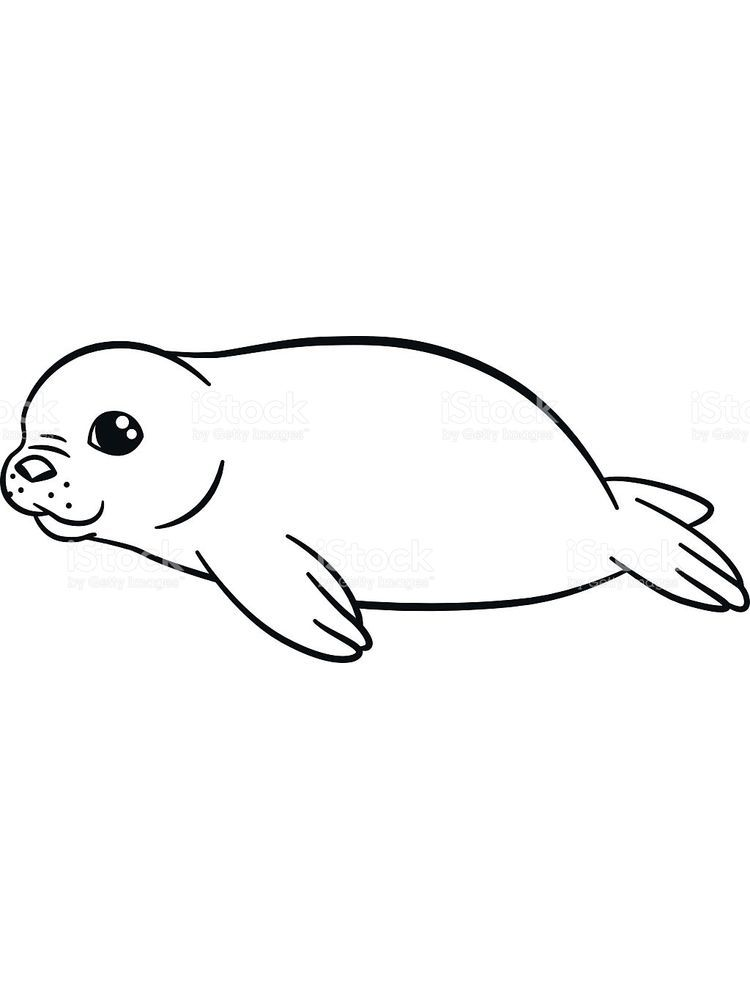 Beanie Boo Seal Coloring Pages Talking About Seals Is Truly Endless This Cute And Adorable Marine Fa Animal Coloring Pages Lion Coloring Pages Coloring Pages