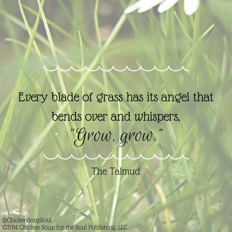 The Grass Whispers