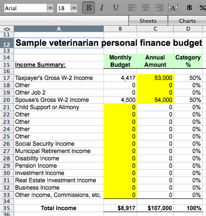 Sample Veterinarian Personal Finance Budget Excel File Download